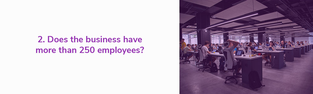 2. Does the business have more than 250 employees?