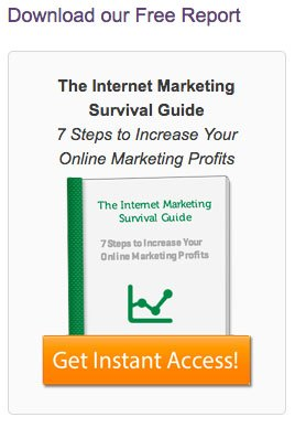 Main Street ROI's Marketing Survival Guide as content upgrade feature