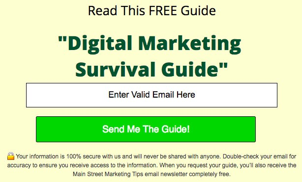 Main Street ROI's email submit form for its Marketing Survival Guide