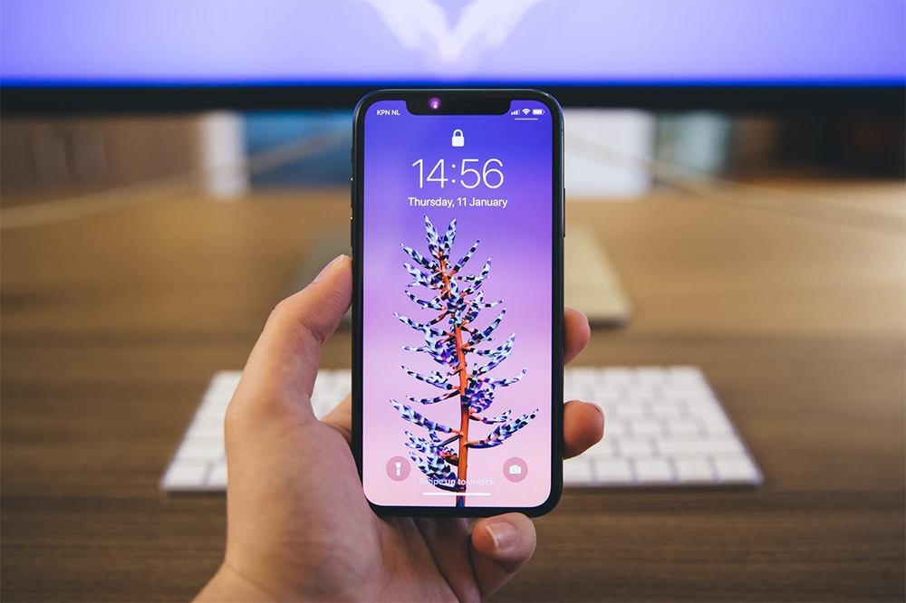 Photo: Person hold iPhone X in hand