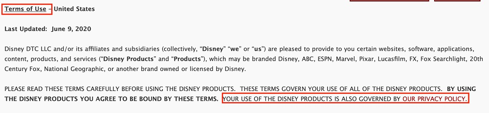 Walt Disney Company Terms of Use: Privacy Policy highlighted