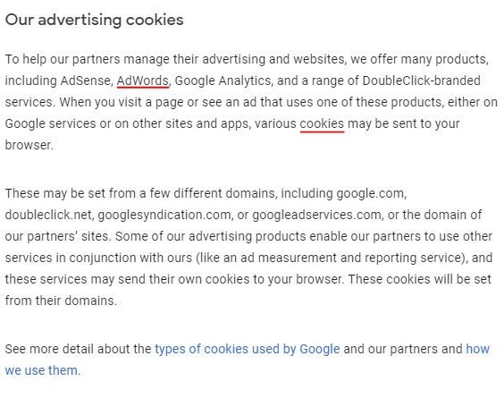 Google Privacy and Terms: How Google Uses Cookies in Advertising page excerpt