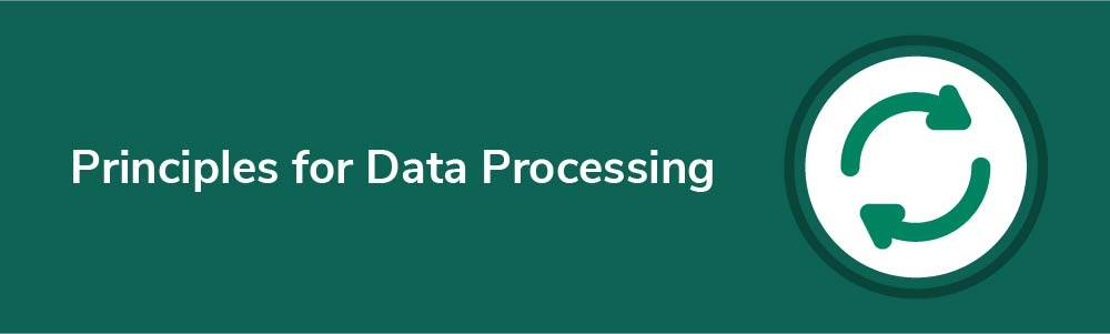Principles for Data Processing