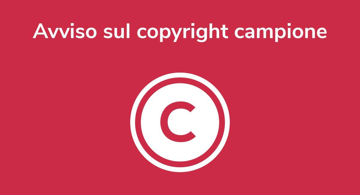 Avviso sul copyright campione