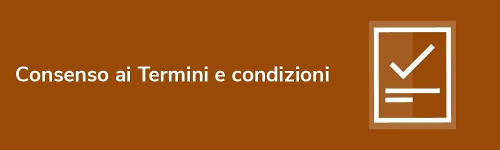 Consenso ai Termini e condizioni