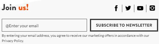 Dynastar E-Mail-Newsletter Anmeldeformular