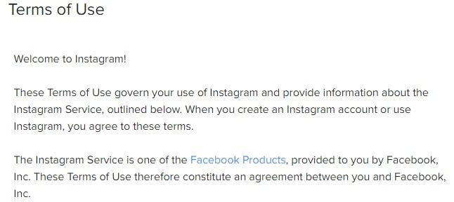 Instagram Nutzungsbedingungen: Einleitende Klausel